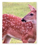 Fawn In The Waning Summer Fleece Blanket