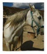 Featured Cute Friend In The Mountain Spain  Fleece Blanket