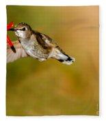 Feeding Anna's Hummingbird Fleece Blanket