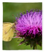 Feeding On Thistle Fleece Blanket