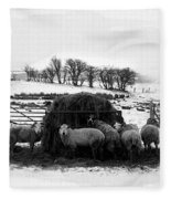 Feeding Time Fleece Blanket