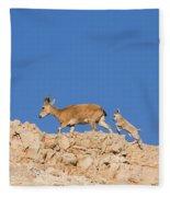 female and young Nubian Ibex Fleece Blanket