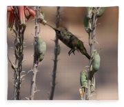 Female Anna's Hummingbird Fleece Blanket