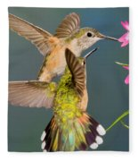 Female Broad-tailed Hummingbird Fleece Blanket