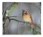 Female Cardinal Fleece Blanket