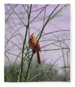 Female Cardinal In Willow Fleece Blanket