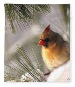 Female Cardinal Nestled In Snow Fleece Blanket