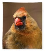 Female Cardinal Fleece Blanket