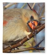 Thorns And Berries - Cardinal Fleece Blanket