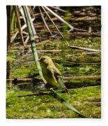 Female Gold Finch Drinking Fleece Blanket
