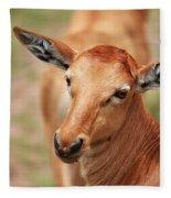Female Impala Fleece Blanket