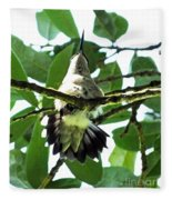 Female Ruby Throated Hummingbird Fleece Blanket