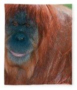Female Sumatran Orangutan Fleece Blanket