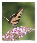Female Tiger Butterly-1-featured In Macro-comfortable Art And Newbies Groups Fleece Blanket