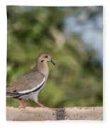 Fence Walker Fleece Blanket
