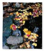 Fern Spring Yosemite Fleece Blanket