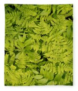 1m2436-ferns At The Base Of Mt. Robson  Fleece Blanket