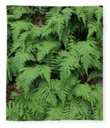 D3b6333-ferns In Sonoma 2  Fleece Blanket