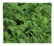 D3b6327-ferns In Sonoma Fleece Blanket
