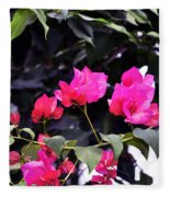 Fernwood Botanical Garden Bougainvillea Niles Michigan Usa Fleece Blanket