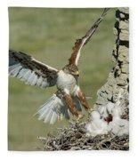 Ferruginous Hawk And Chicks Fleece Blanket