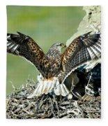 Ferruginous Hawk Male At Nest Fleece Blanket