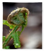 Fiddlehead 2 Fleece Blanket