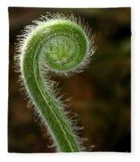 Fiddlehead Fern Curl Fleece Blanket