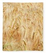 Field Of Gold - 4 Fleece Blanket