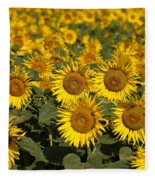 Field Of Sunflowers Fleece Blanket