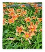 Field Of Tiger Lilies Fleece Blanket