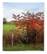 Field With Sumac In Autumn Fleece Blanket