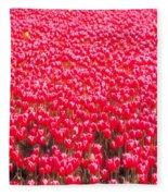 Fields Of Tulips Alkmaar Vicinity Fleece Blanket