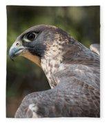 Fierce Predator Fleece Blanket
