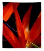 Fiery Red Bird Of Paradise Fleece Blanket