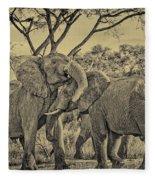 fighting male African elephants Fleece Blanket