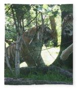 Fighting Siberian Tigers Fleece Blanket