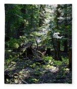 Filtered Sunlight Peace Fleece Blanket