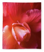 Fire And Ice Floral Begonia Fleece Blanket
