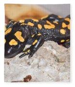Fire Salamander Salamandra Salamandra Fleece Blanket