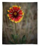 Firewheel Fleece Blanket