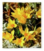 First Crocus Serenade Fleece Blanket