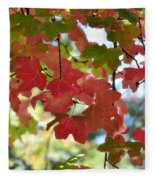 First Signs Of Fall  Fleece Blanket