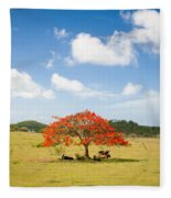 Flamboyant Fleece Blanket