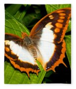 Flame Bordered Charaxes Butterfly Fleece Blanket