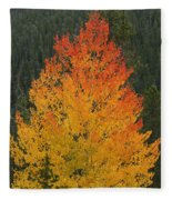 Flame On Fleece Blanket