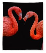 Flamenco ... Baby Fleece Blanket