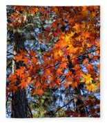 Flaming Maple Beneath The Pines Fleece Blanket
