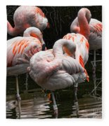 Flamingo 5 Fleece Blanket