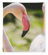 Flamingo Bird Portrait. Fleece Blanket
